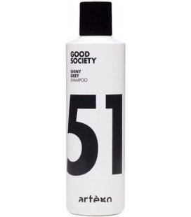 Artego Bonne Société 51 Brillant Gris Shampooing 250ml