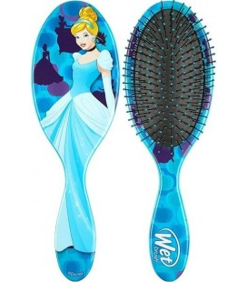 Wet Disney Princess Cinderella